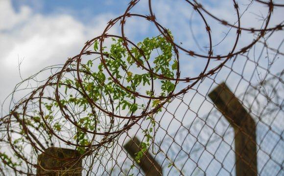 Las mujeres son más vulnerables a las condenas por tráfico de drogas porque la justicia incrimina más delitos menores, dice pesquisadora