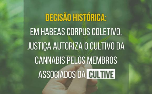 Cultive e Reforma conseguem o primeiro Habeas Corpus coletivo do país para cultivo de Cannabis para fins terapêuticos